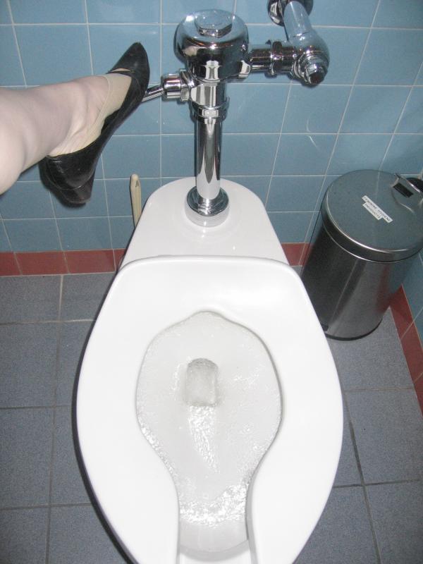 Flushing the Toilet